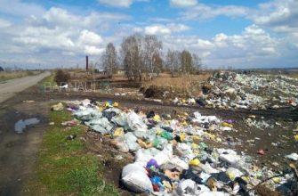 Экология Алтайского края