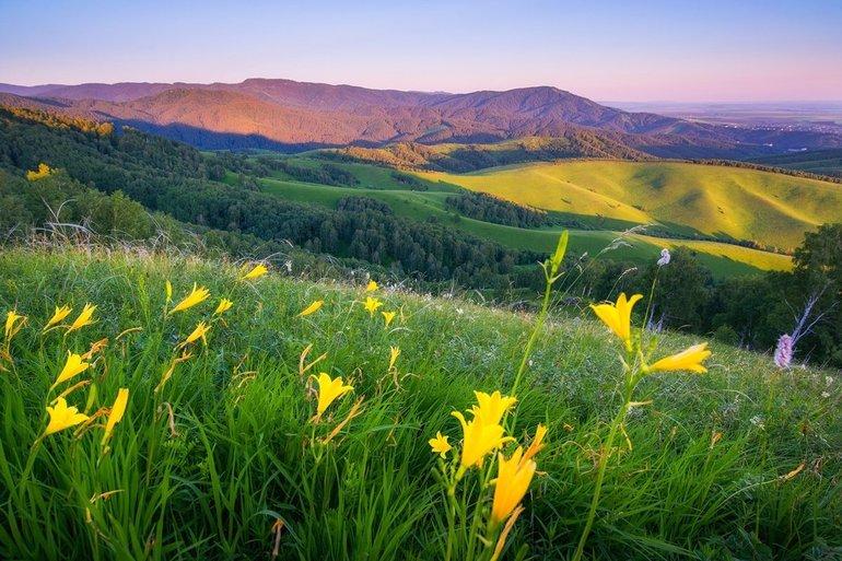 Отличительные черты природы Алтайского края