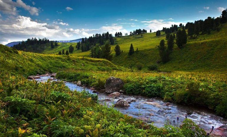 Природные условия Алтайского края